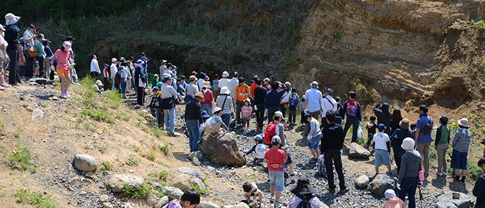化石採集イベントの様子