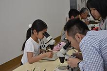実体顕微鏡を用いて微化石を探している様子
