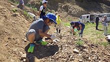 化石採集をしている男の子たち