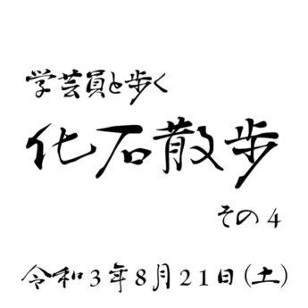8/21 学芸員と歩く化石散歩 その4